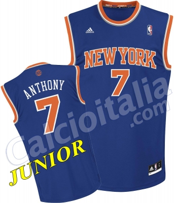 CARMELO ANTHONY JUNIOR JERSEY